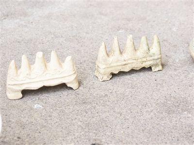 漳窑遗址典型代表:华安东溪窑